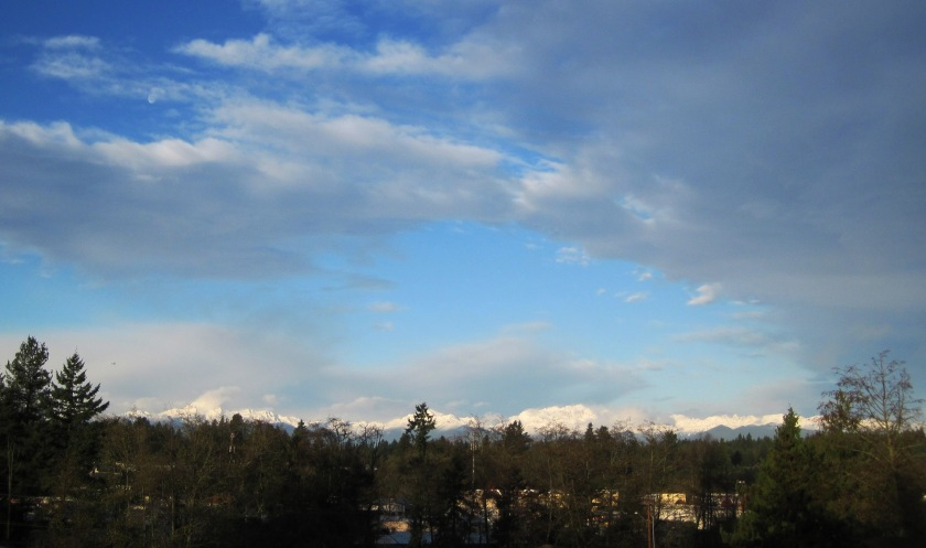 The always stunning Olympic Mountains.