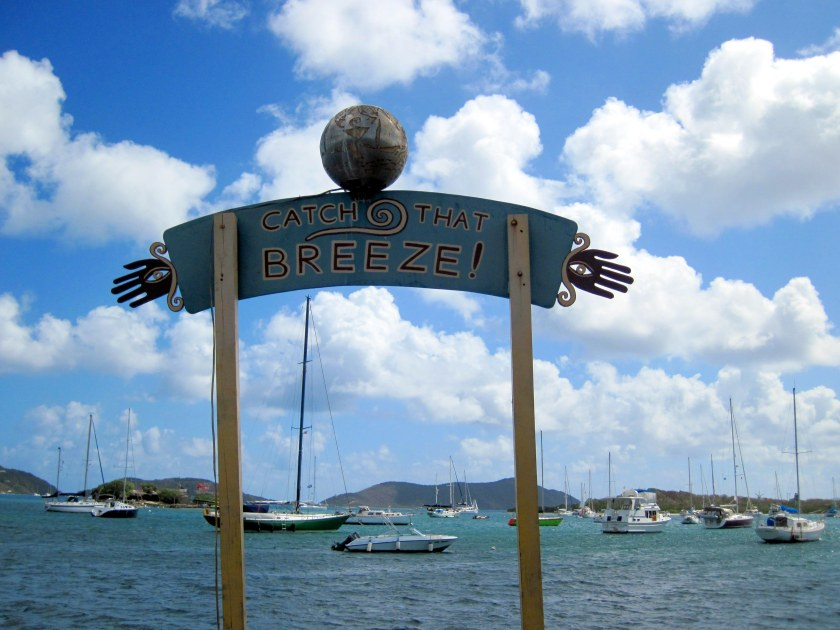 Welcome to Trellis Bay.